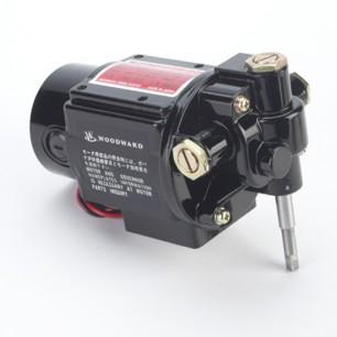 motors-21-306x306.jpg