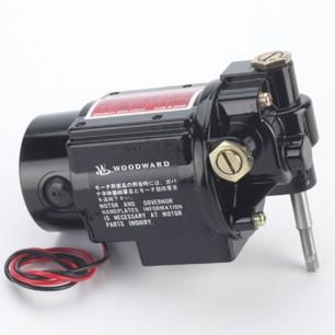 motors-41-306x306.jpg